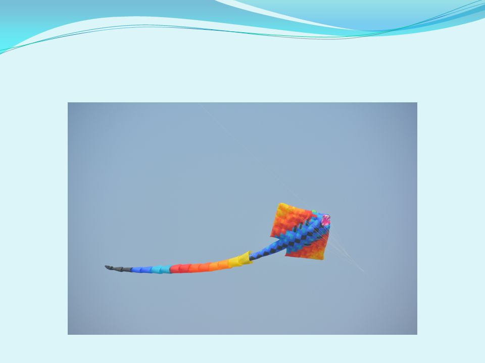 Colourful Dragon Fish…