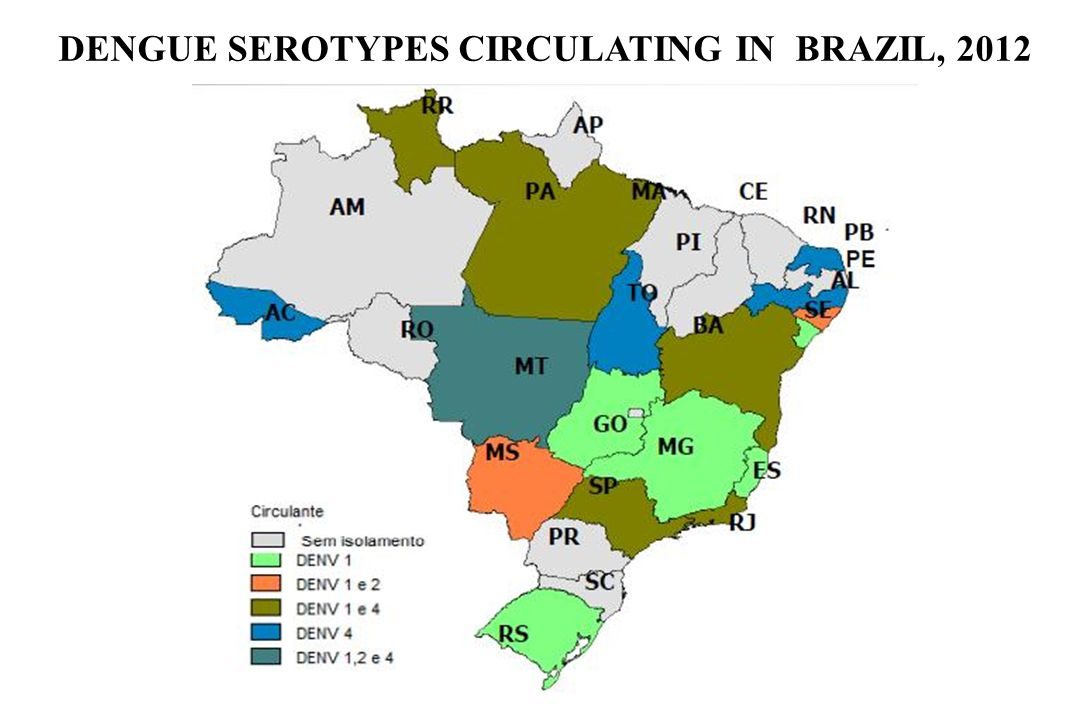 DENGUE SEROTYPES CIRCULATING IN BRAZIL, 2012