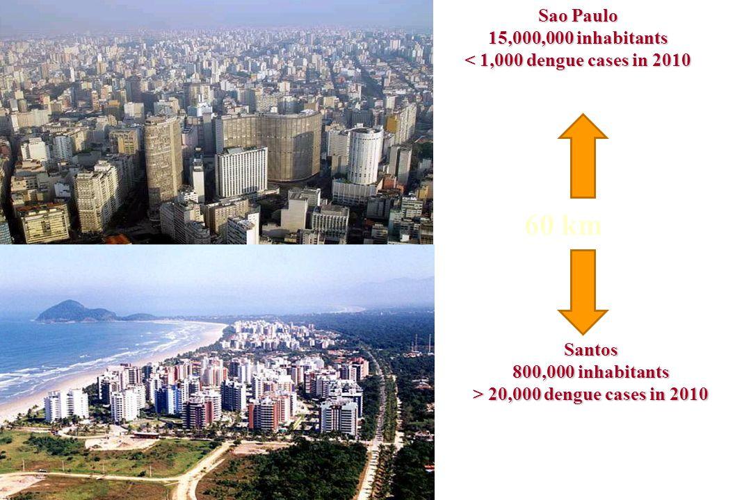 Sao Paulo 15,000,000 inhabitants < 1,000 dengue cases in 2010 Santos 800,000 inhabitants > 20,000 dengue cases in 2010 60 km