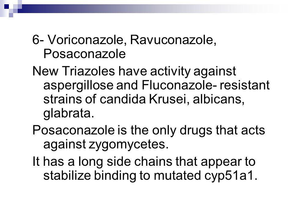 6- Voriconazole, Ravuconazole, Posaconazole New Triazoles have activity against aspergillose and Fluconazole- resistant strains of candida Krusei, albicans, glabrata.