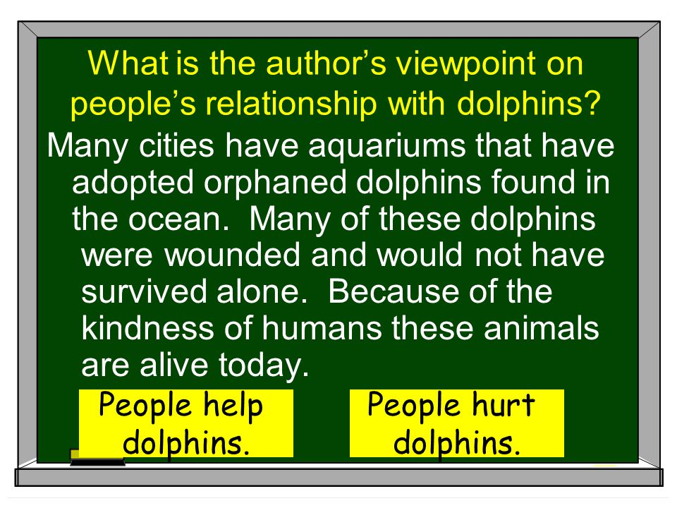 What is the author's viewpoint on people's relationship with dolphins? Many cities have aquariums that have adopted orphaned dolphins found in the oce