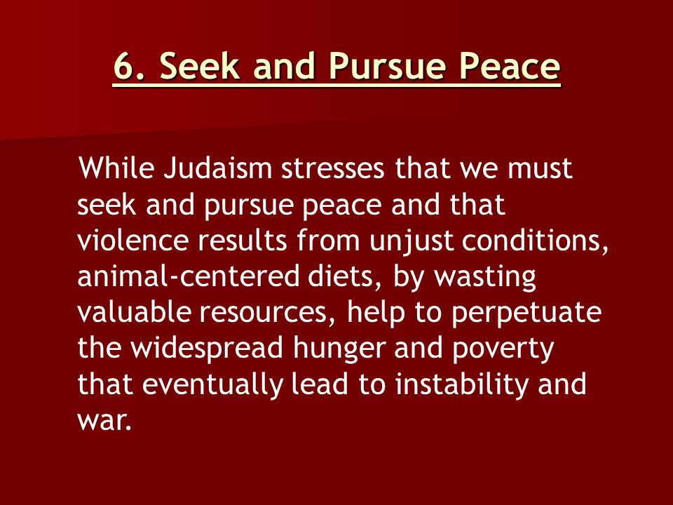 6. Seek and Pursue Peace While Judaism stresses that we must seek and pursue peace and that violence results from unjust conditions, animal-centered d