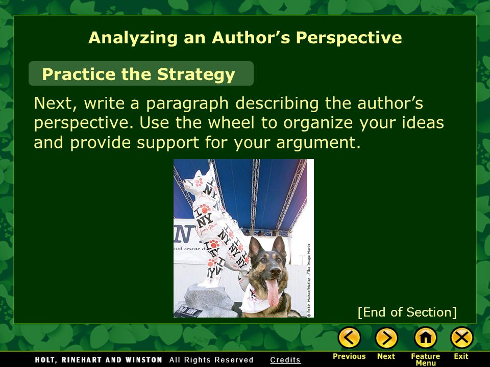 Analyzing an Author's Perspective Practice the Strategy Next, write a paragraph describing the author's perspective.