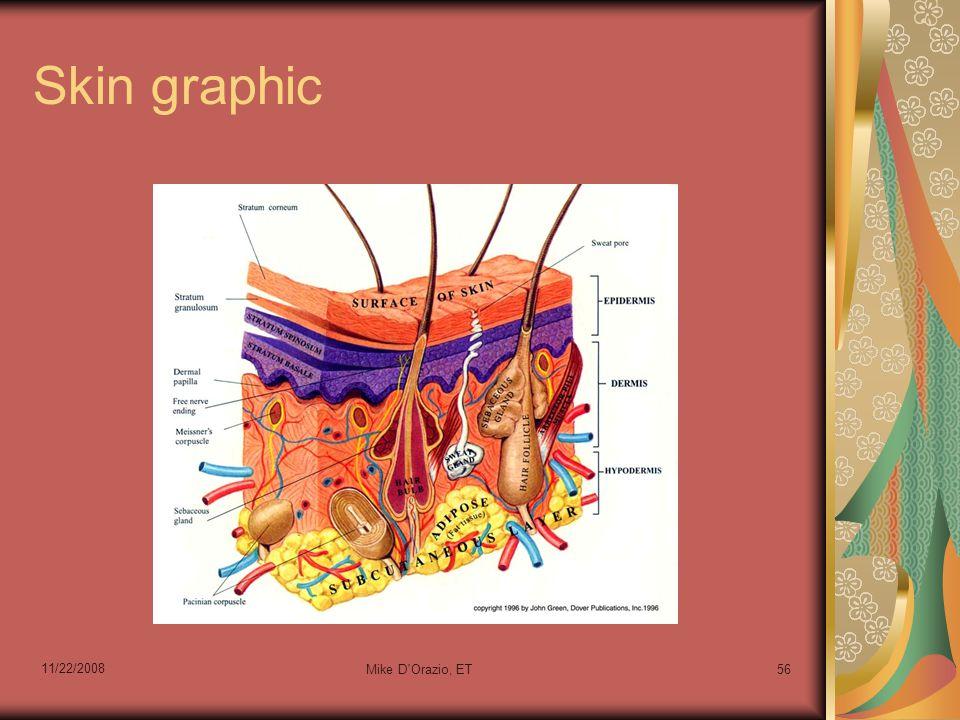 11/22/2008 Mike D Orazio, ET56 Skin graphic