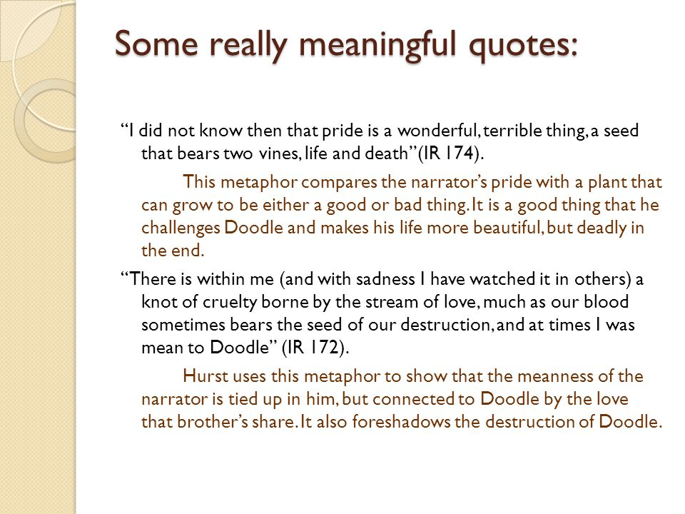 """Some really meaningful quotes: """"I did not know then that pride is a wonderful, terrible thing, a seed that bears two vines, life and death""""(IR 174). T"""