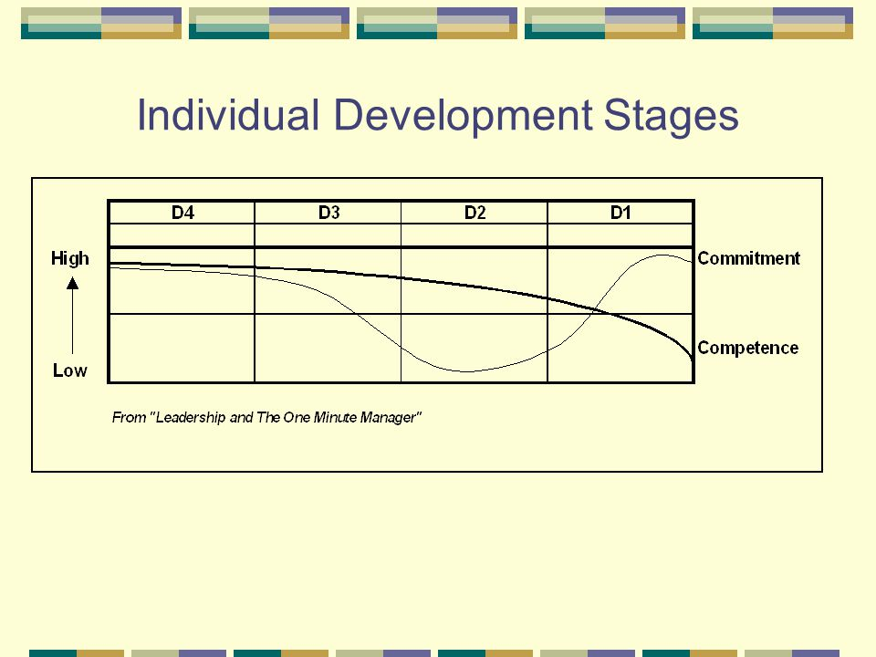 Individual Development Stages