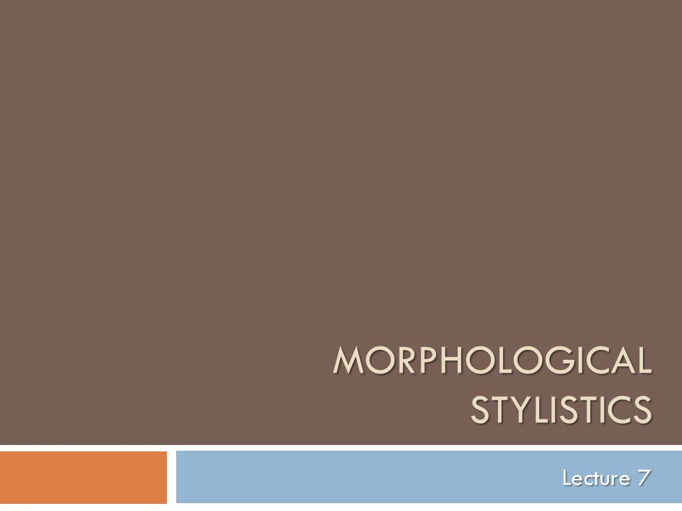 MORPHOLOGICAL STYLISTICS Lecture 7