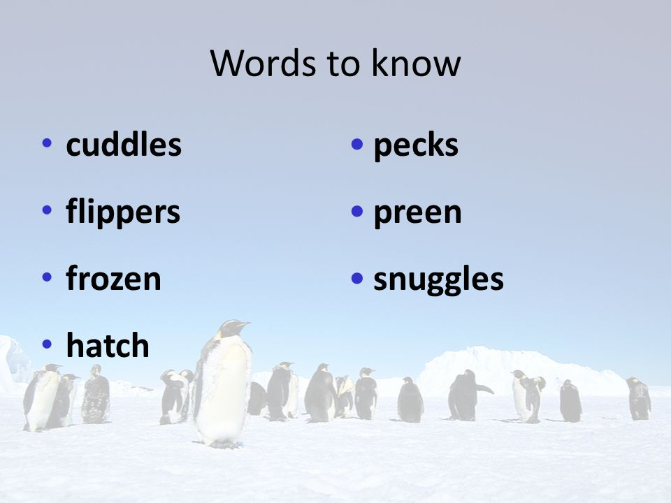Build Background Copy this KWL chart in your journal. Emperor penguins KnowWant to knowLearned home