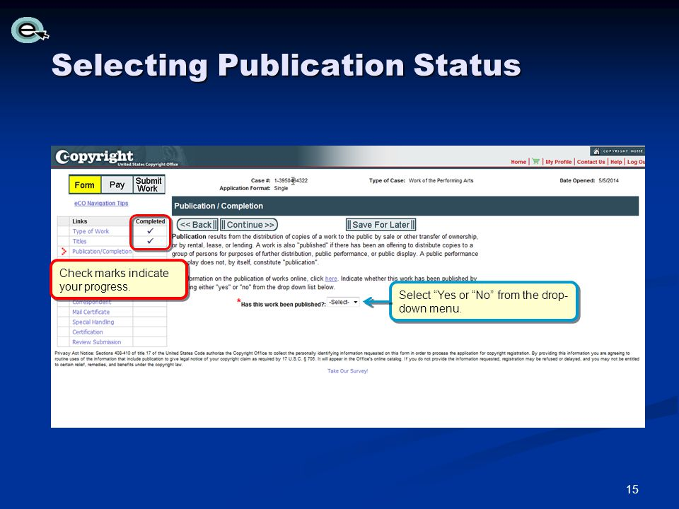 Selecting Publication Status Check marks indicate your progress.