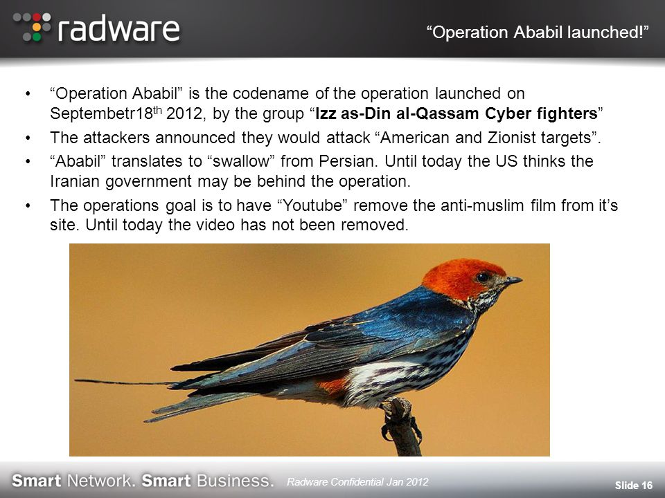 Operation Ababil launched! Operation Ababil is the codename of the operation launched on Septembetr18 th 2012, by the group Izz as-Din al-Qassam Cyber fighters The attackers announced they would attack American and Zionist targets .