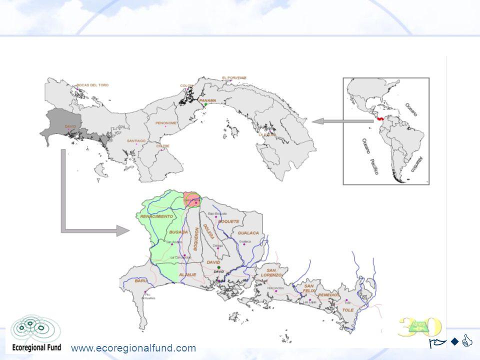 PwC www.ecoregionalfund.com