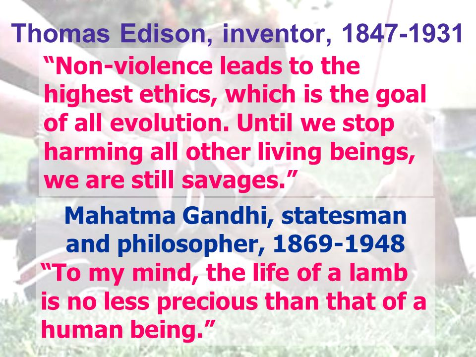 "Mahatma Gandhi, statesman and philosopher, 1869-1948 ""To my mind, the life of a lamb is no less precious than that of a human being."" ""Non-violence le"
