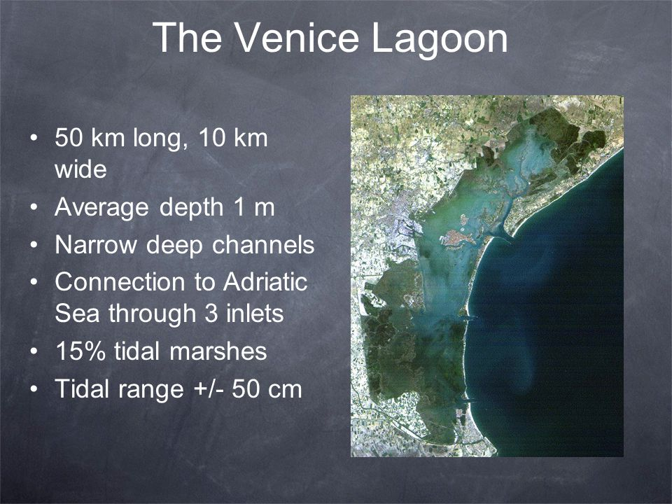 The Venice Lagoon 50 km long, 10 km wide Average depth 1 m Narrow deep channels Connection to Adriatic Sea through 3 inlets 15% tidal marshes Tidal ra