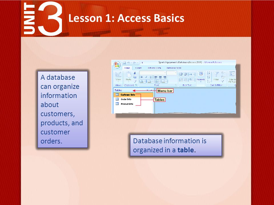 Lesson 1: Access Basics A database can organize information about customers, products, and customer orders.