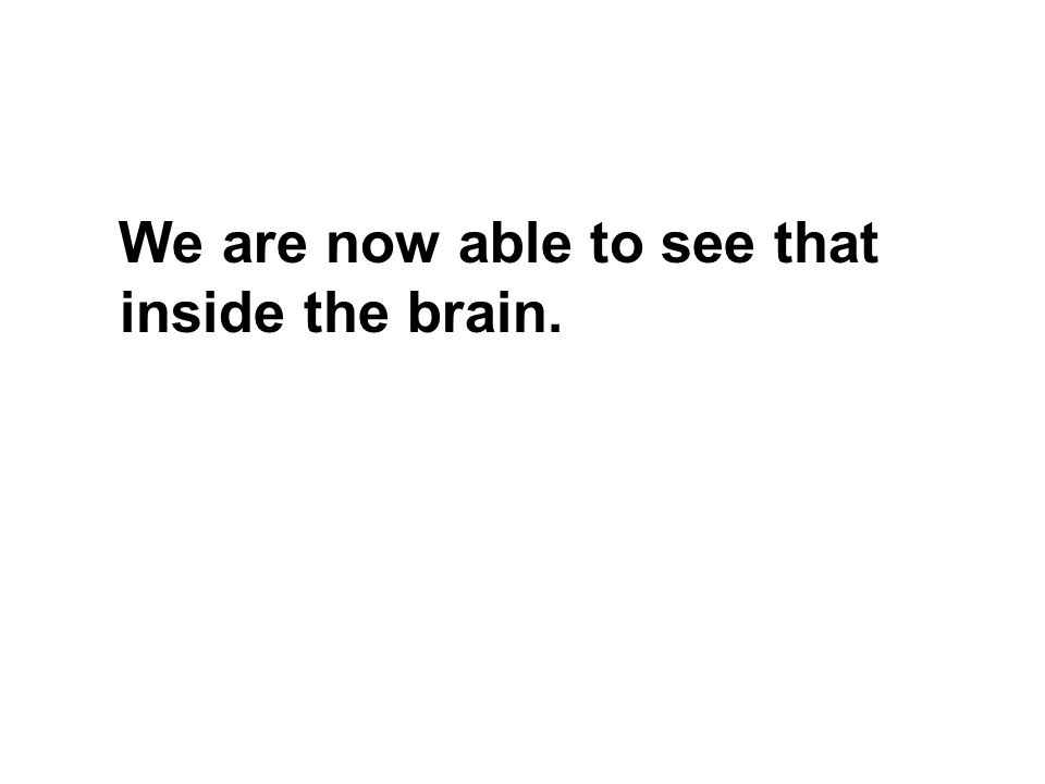 We are now able to see that inside the brain.