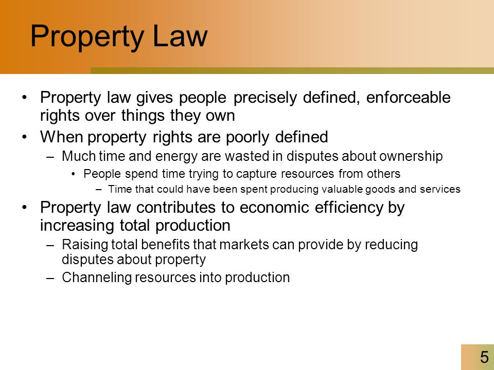 5 Property Law Property law gives people precisely defined, enforceable rights over things they own When property rights are poorly defined –Much time and energy are wasted in disputes about ownership People spend time trying to capture resources from others –Time that could have been spent producing valuable goods and services Property law contributes to economic efficiency by increasing total production –Raising total benefits that markets can provide by reducing disputes about property –Channeling resources into production