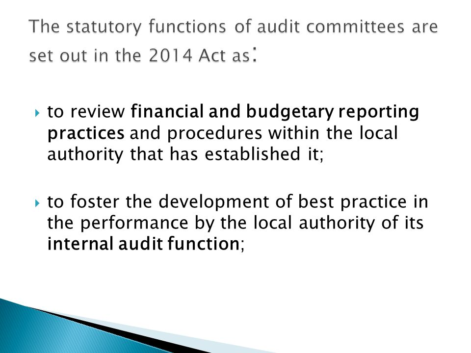  to review financial and budgetary reporting practices and procedures within the local authority that has established it;  to foster the development