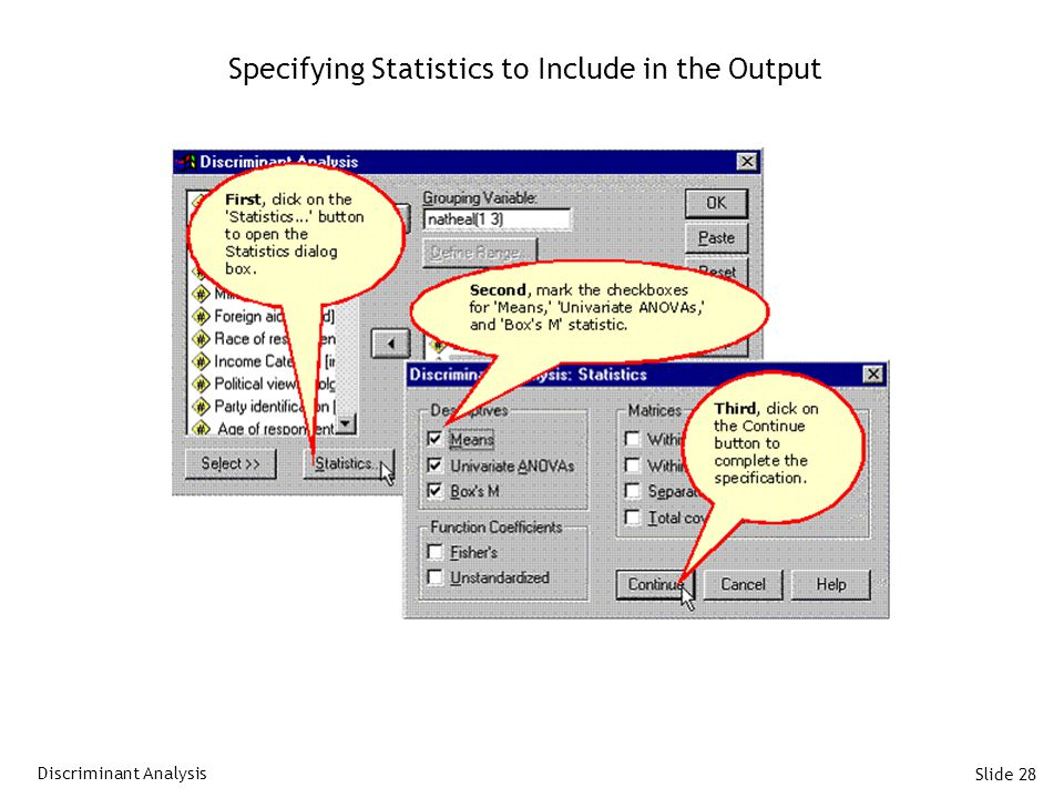 Slide 28 Specifying Statistics to Include in the Output Discriminant Analysis