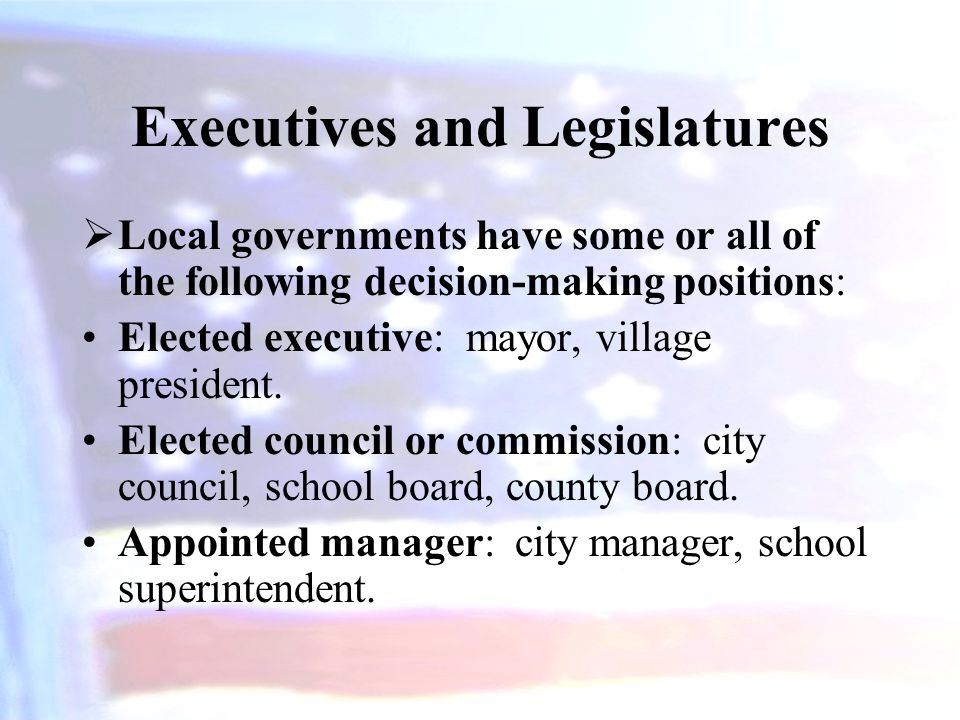 Executives and Legislatures  Local governments have some or all of the following decision-making positions: Elected executive: mayor, village preside