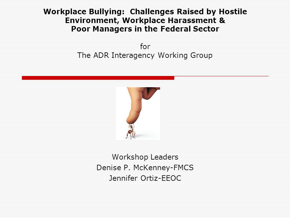 Workplace Bullying: Challenges Raised by Hostile Environment, Workplace Harassment & Poor Managers in the Federal Sector for The ADR Interagency Worki