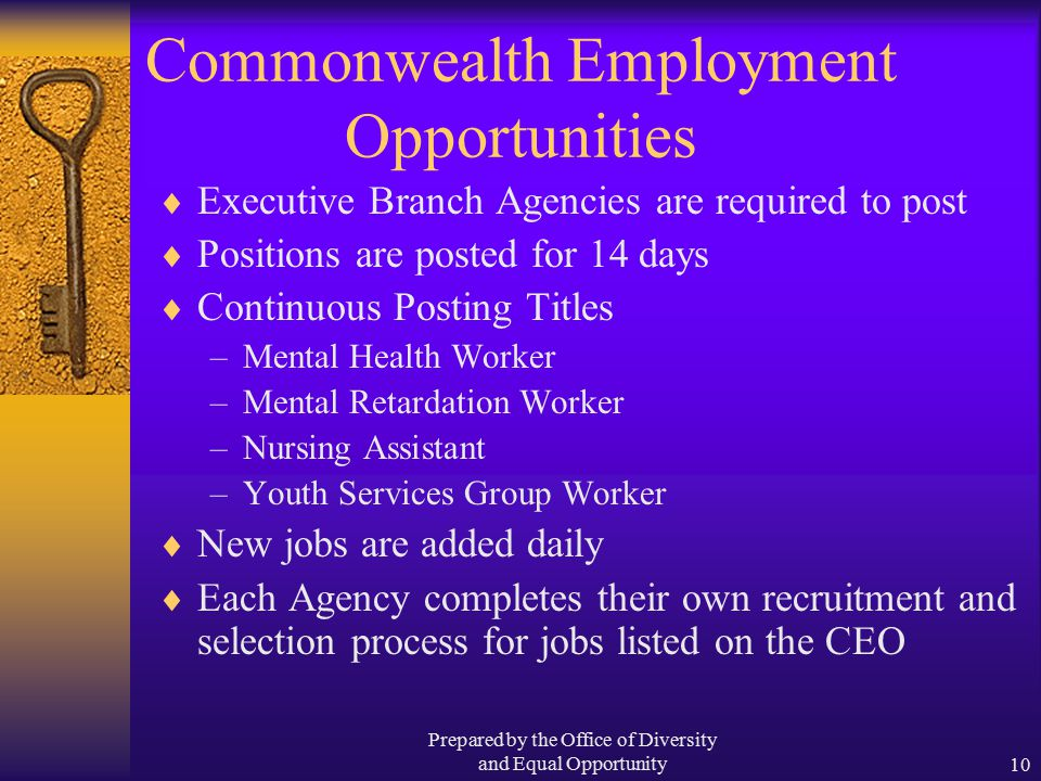 Prepared by the Office of Diversity and Equal Opportunity10 Commonwealth Employment Opportunities  Executive Branch Agencies are required to post  Positions are posted for 14 days  Continuous Posting Titles –Mental Health Worker –Mental Retardation Worker –Nursing Assistant –Youth Services Group Worker  New jobs are added daily  Each Agency completes their own recruitment and selection process for jobs listed on the CEO