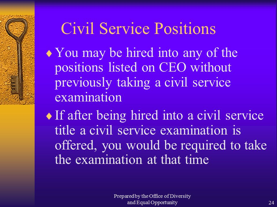 Prepared by the Office of Diversity and Equal Opportunity24 Civil Service Positions  You may be hired into any of the positions listed on CEO without previously taking a civil service examination  If after being hired into a civil service title a civil service examination is offered, you would be required to take the examination at that time