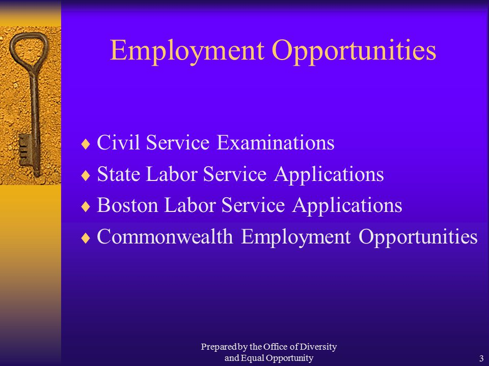 Prepared by the Office of Diversity and Equal Opportunity3 Employment Opportunities  Civil Service Examinations  State Labor Service Applications  Boston Labor Service Applications  Commonwealth Employment Opportunities