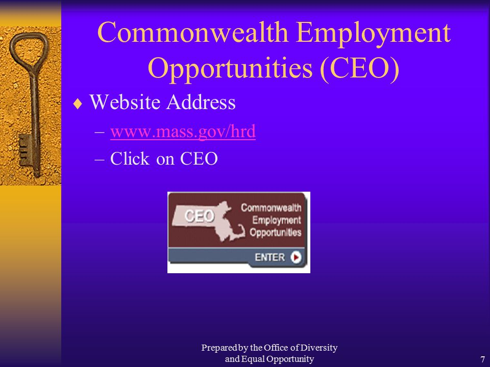Prepared by the Office of Diversity and Equal Opportunity7 Commonwealth Employment Opportunities (CEO)  Website Address –www.mass.gov/hrdwww.mass.gov/hrd –Click on CEO