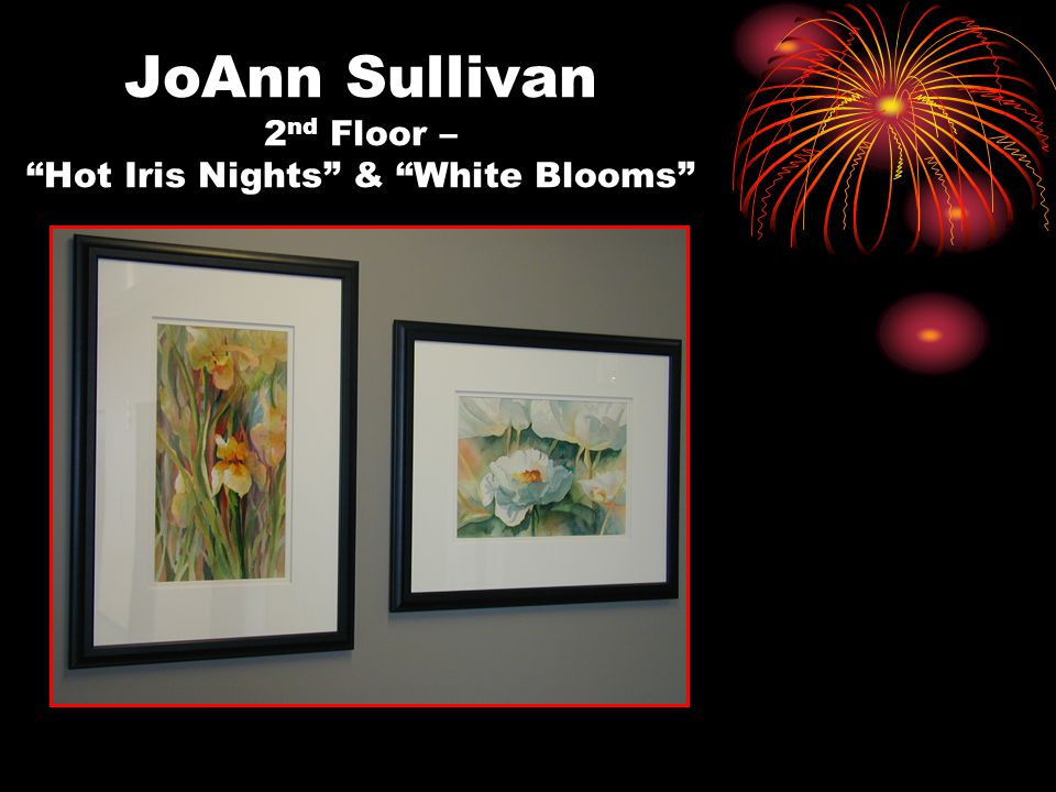 JoAnn Sullivan 2 nd Floor – Hot Iris Nights & White Blooms