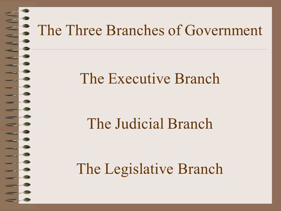 The Executive Branch The executive branch of Government makes sure that the laws of the United States are obeyed.