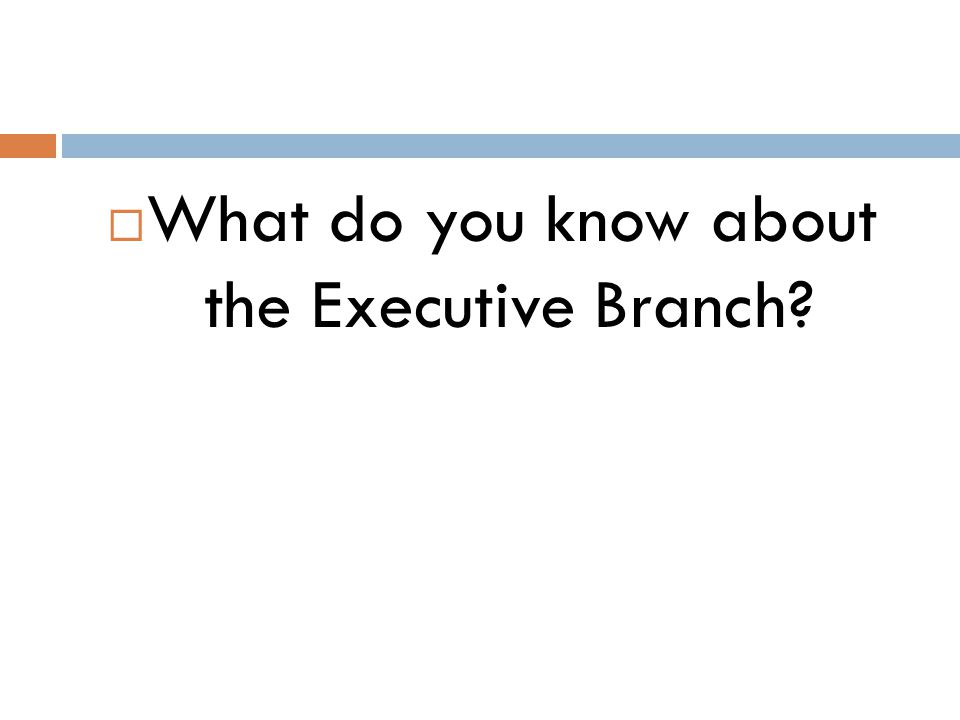  What do you know about the Executive Branch?