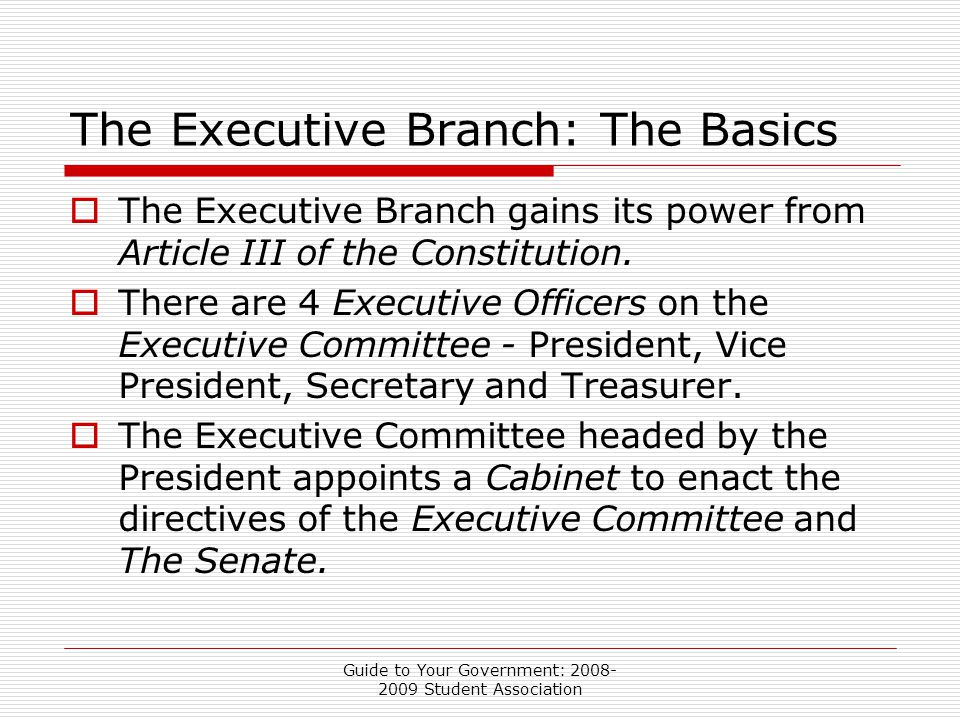 Guide to Your Government: 2008- 2009 Student Association The Executive Branch: The Basics  The Executive Branch gains its power from Article III of the Constitution.