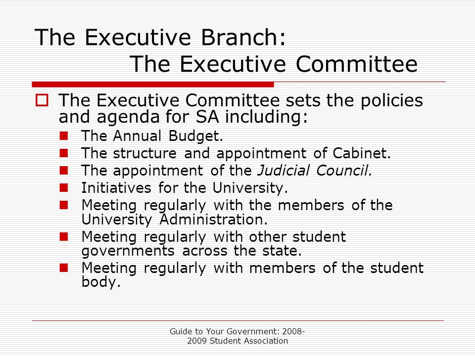 Guide to Your Government: 2008- 2009 Student Association The Executive Branch: The Executive Committee  The Executive Committee sets the policies and agenda for SA including: The Annual Budget.
