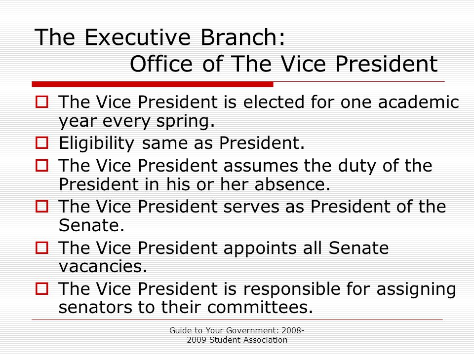 Guide to Your Government: 2008- 2009 Student Association The Executive Branch: Office of The Vice President  The Vice President is elected for one academic year every spring.
