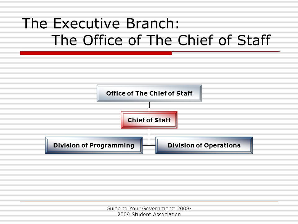 Guide to Your Government: 2008- 2009 Student Association The Executive Branch: The Office of The Chief of Staff Office of The Chief of Staff Chief of Staff Division of Programming Division of Operations