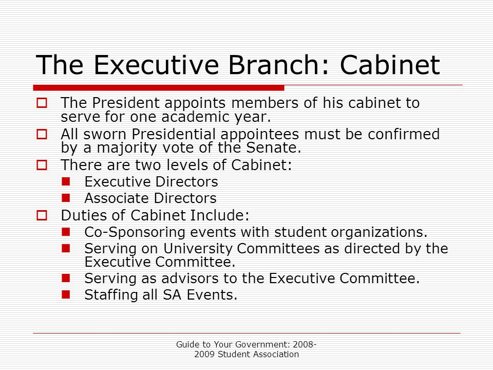 Guide to Your Government: 2008- 2009 Student Association The Executive Branch: Cabinet  The President appoints members of his cabinet to serve for one academic year.