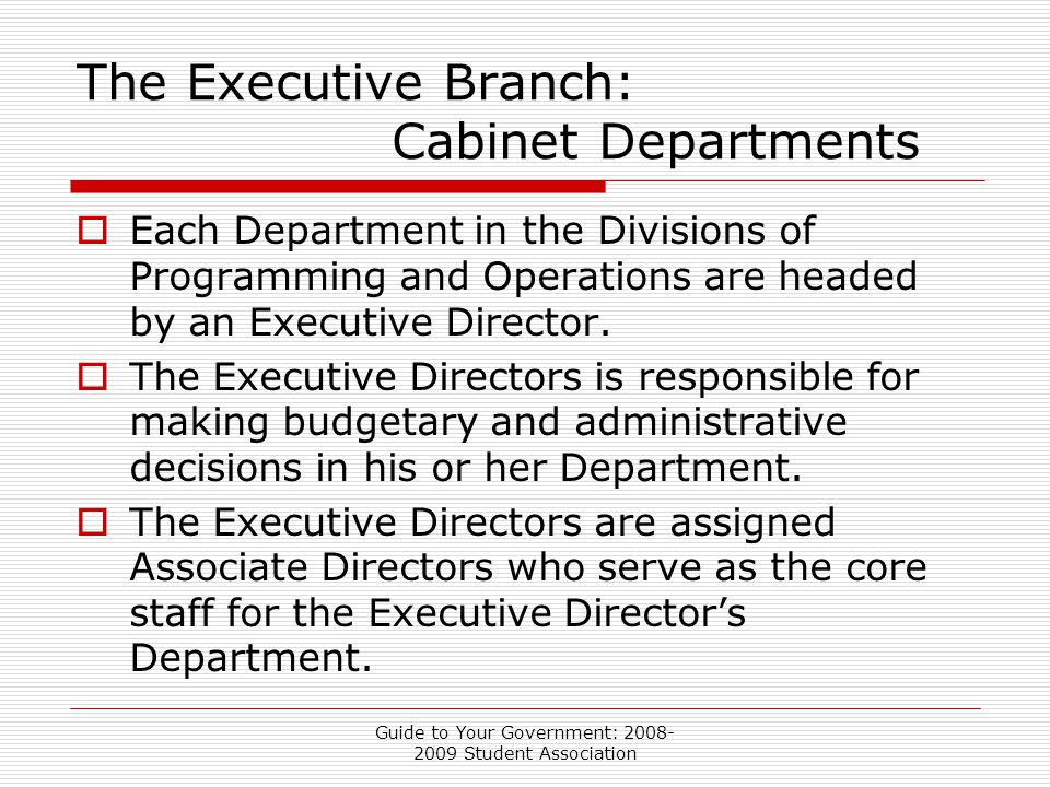 Guide to Your Government: 2008- 2009 Student Association The Executive Branch: Cabinet Departments  Each Department in the Divisions of Programming and Operations are headed by an Executive Director.