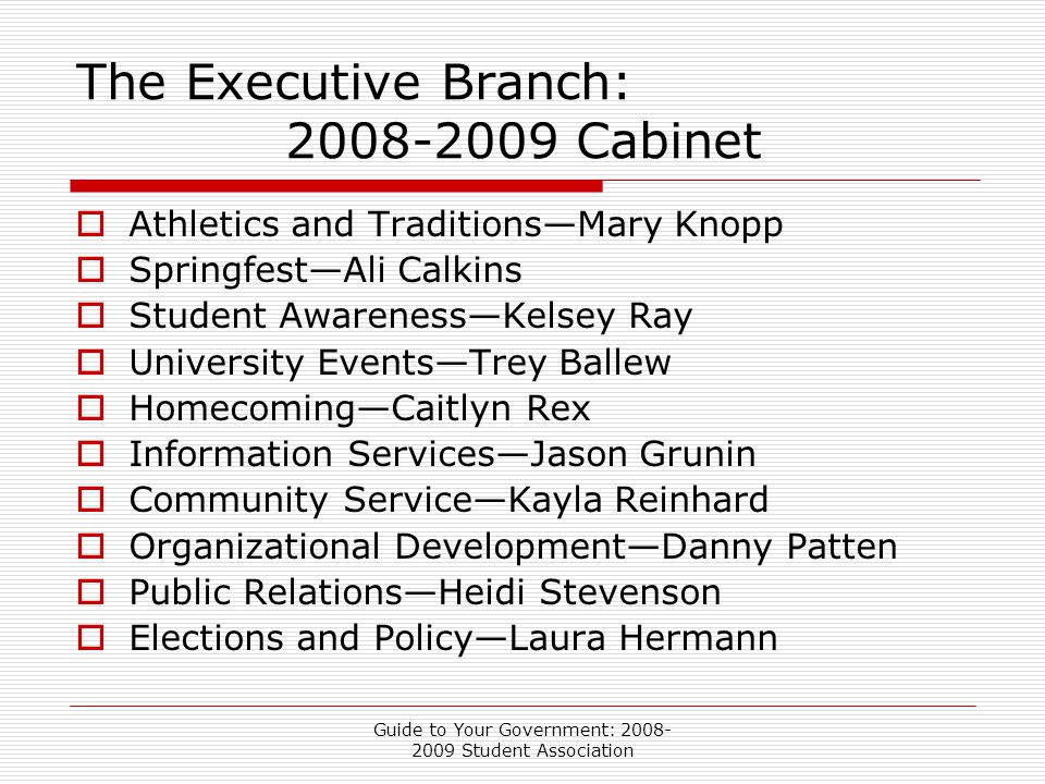 Guide to Your Government: 2008- 2009 Student Association The Executive Branch: 2008-2009 Cabinet  Athletics and Traditions—Mary Knopp  Springfest—Ali Calkins  Student Awareness—Kelsey Ray  University Events—Trey Ballew  Homecoming—Caitlyn Rex  Information Services—Jason Grunin  Community Service—Kayla Reinhard  Organizational Development—Danny Patten  Public Relations—Heidi Stevenson  Elections and Policy—Laura Hermann