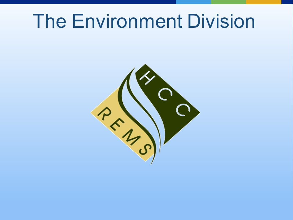 The Environment Division