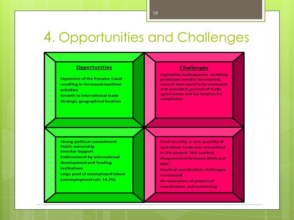 4. Opportunities and Challenges 19