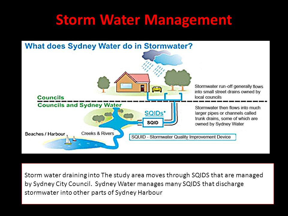 Storm Water Management Storm water draining into The study area moves through SQIDS that are managed by Sydney City Council.