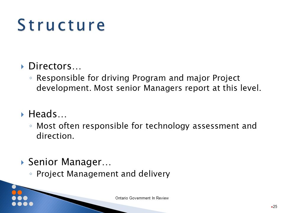 Ontario Government In Review  Directors… ◦ Responsible for driving Program and major Project development.
