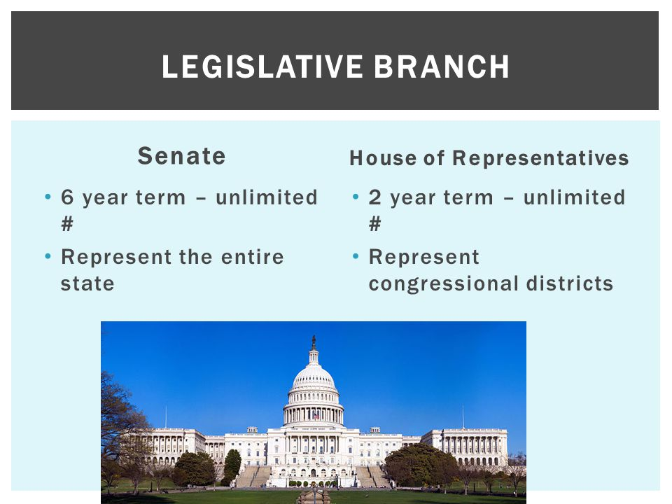 Senate 6 year term – unlimited # Represent the entire state House of Representatives 2 year term – unlimited # Represent congressional districts LEGIS