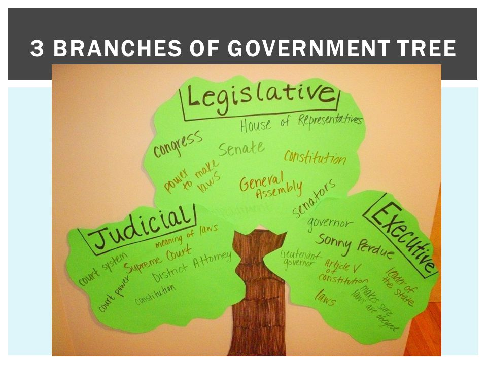  Choose one of the three: How does one of the branches (legislative, executive, or judicial) limit the other two.