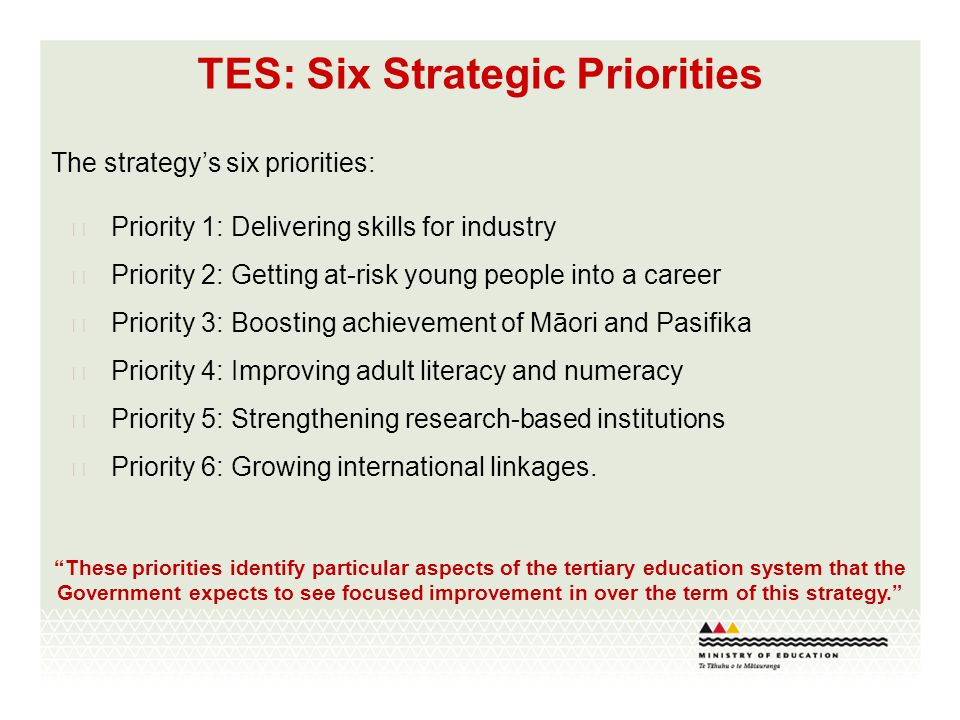 TES: Six Strategic Priorities The strategy's six priorities:  Priority 1: Delivering skills for industry  Priority 2: Getting at-risk young people i