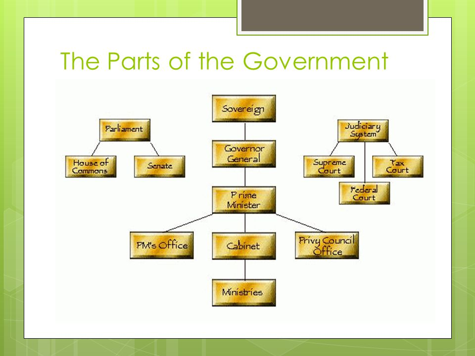 The Parts of the Government