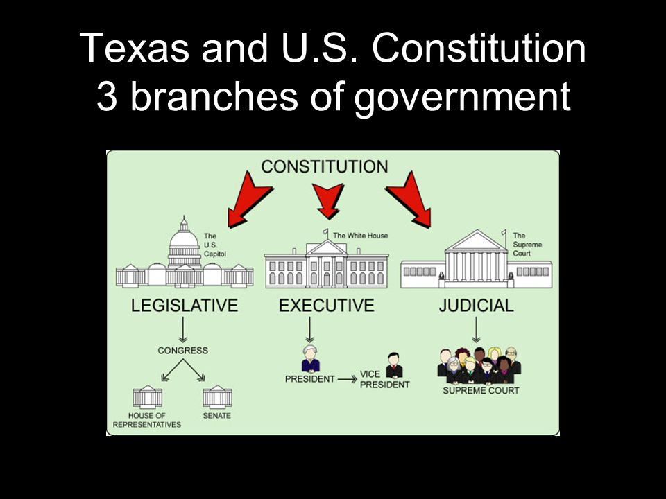 Texas and U.S. Constitution 3 branches of government