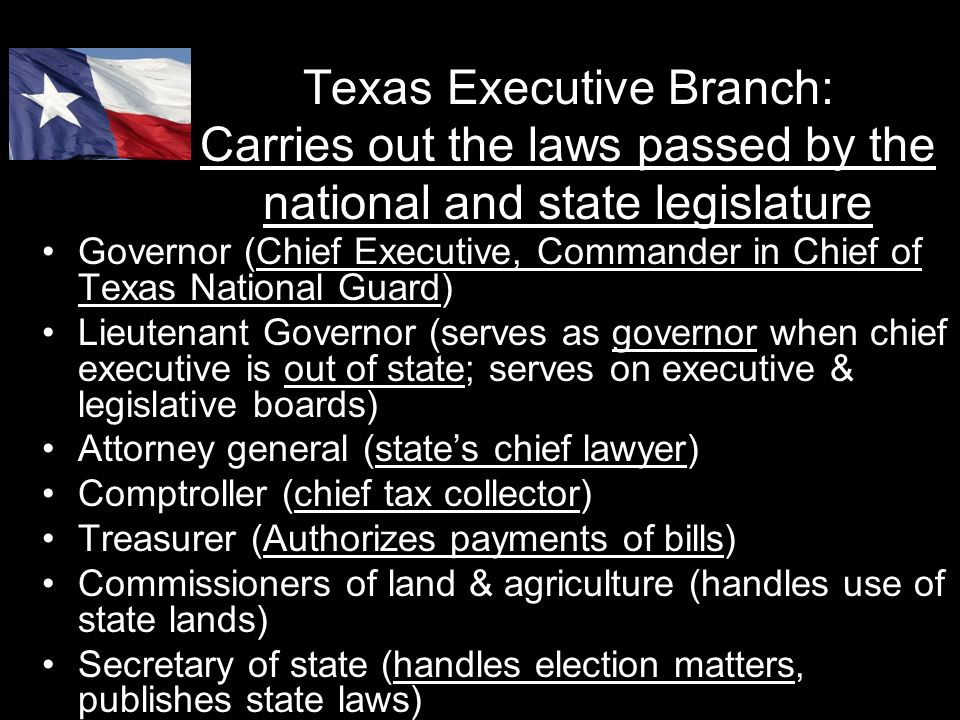 Texas Executive Branch: Carries out the laws passed by the national and state legislature Governor (Chief Executive, Commander in Chief of Texas Natio