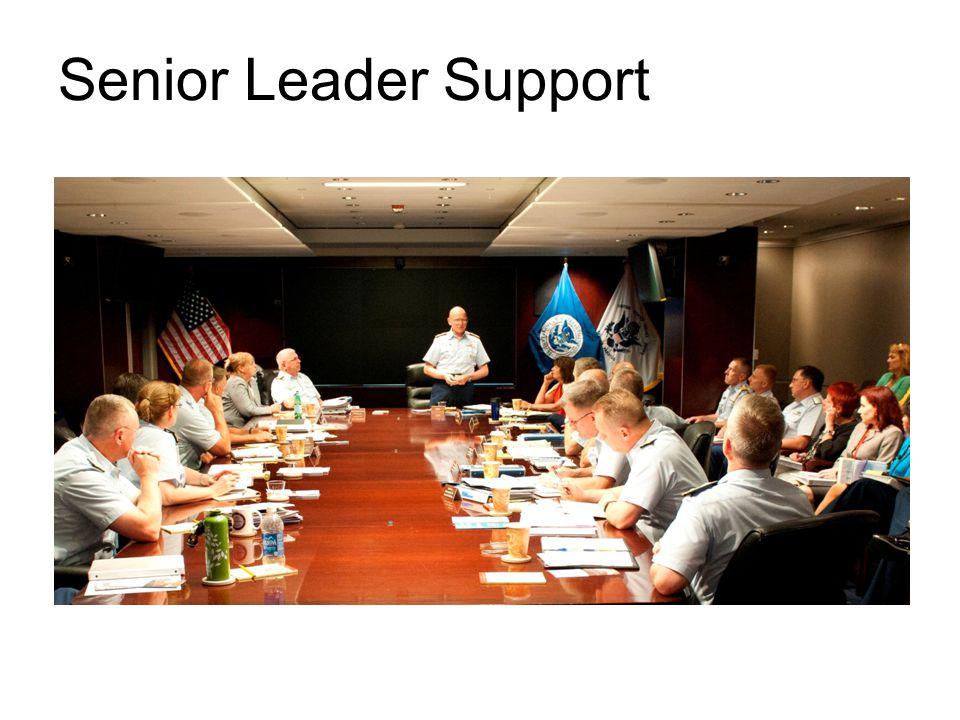 Senior Leader Support