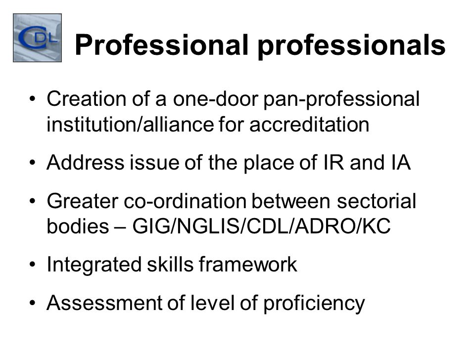 Professional professionals Creation of a one-door pan-professional institution/alliance for accreditation Address issue of the place of IR and IA Greater co-ordination between sectorial bodies – GIG/NGLIS/CDL/ADRO/KC Integrated skills framework Assessment of level of proficiency